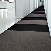 Arena Carpet Tiles SL
